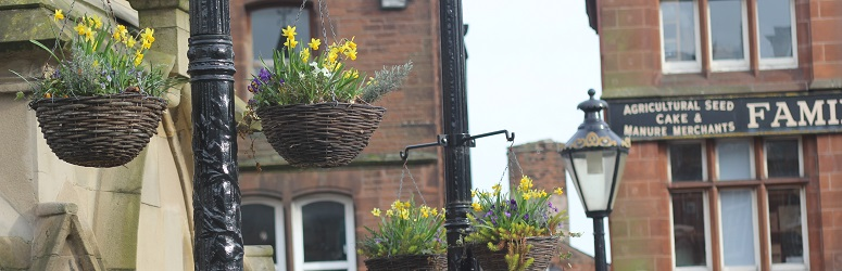 Penrith hanging baskets