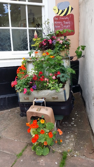 Quirky planters, Penrith